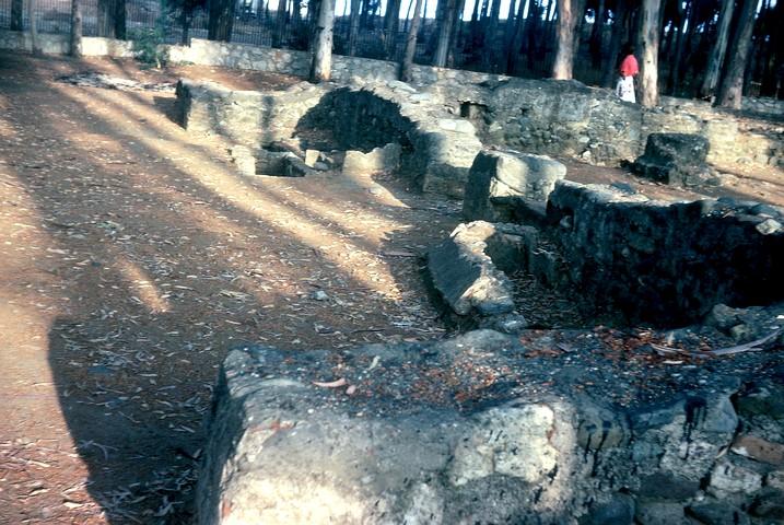 Restos del pórtico del lado norte y parte nordeste de la iglesia al fondo.Ambos pórticos y otras zonas del entorno de la basílica eran utilizados para enterramientos.