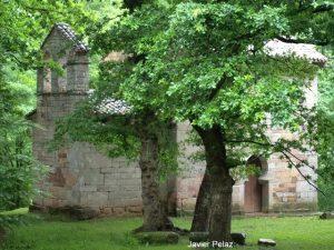San Román de Moroso. Vista del costado norte.